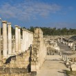 Roman columns , Beit Shean , Israel — Stock Photo #13820029