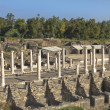 Ancient Roman columns ,  Beit Shean , Israel — Stock Photo