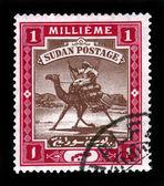 The Camel Post 1 millieme — Stock Photo