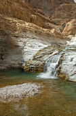Ein Gedi - mineral water spring — Stock Photo