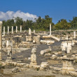 Ancient Roman archaeological site — Stock Photo #17163043