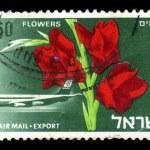Постер, плакат: Flowers from Israel