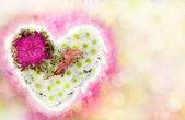 Coração de flores como uma prova — Fotografia Stock