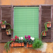 Old window with shutters in Rome, Italy — Stock Photo
