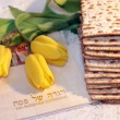 Joyful spring festival - jewish holiday of Passover — 图库照片