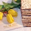 Joyful spring festival - jewish holiday of Passover - 图库照片