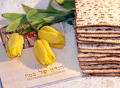 Joyful spring festival - jewish holiday of Passover — Stockfoto