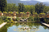 Pond in the Lourmarin Castle ( chateau de lourmarin ) — Stock Photo