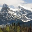 Beautiful scenery in the magnificent Canadian Rockies — Stock Photo