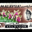 Postage stamp Malaysi1965 Phalaenopsis Violacea, orchid endemic flower — Stock Photo #24911167
