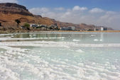 Salt deposits and resort area on the Dead Sea — Stock Photo
