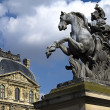 Equestrian statue of king Louis XIV in courtyard of the Louvre museum — Stock Photo