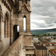 Постер, плакат: View of Geneva from Cathedral Saint Pierre Switzerland