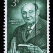Harvey Washington Wiley, chemist — Stock Photo