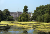 Lake in saint james park and palace, london — Stock Photo