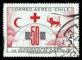 Symbolen van de internationale samenleving van rode kruis en rode halve maan — Stockfoto