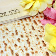 Spring holiday of Passover — Stock Photo #39684061