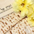 Spring holiday of Passover — Stock Photo #39684067