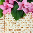 Spring holiday of Passover — Stock Photo #39684091
