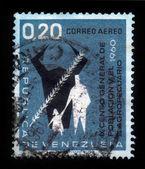 9th General Census in the Venezuela — Stock Photo
