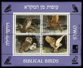 Biblical birds - owls — 图库照片