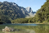 Fabulous scenery in New Zealand — Stock Photo