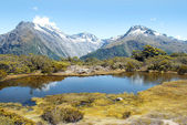 Magnificent fabulous scenery in New Zealand — Stock Photo