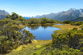 Magnificent landscapes of New Zealand — Stock Photo