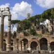 Famous ancient Roman Forum, Rome, Italy — Stock Photo #49701299