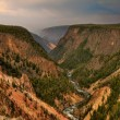 Yellowstone National Park — Stock Photo #12041422
