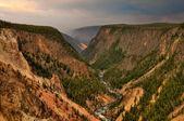 Yellowstone National Park — Stock Photo