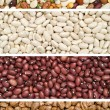 Dried Beans — Stock Photo #19635335