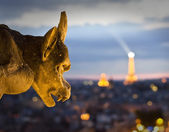View from Notre Dame — Stock Photo