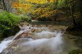 Autmun river — Stock Photo