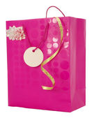 Girly Gift Bag — Stock Photo