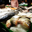 Barcelona fish market. - Stock Photo
