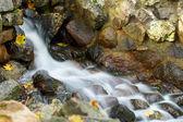 Water and stone — Stock Photo