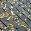 Boards with leaves background. — Stock Photo