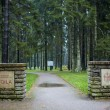 Cemetery of German soldiers in Toila, Estonia. — Stock Photo