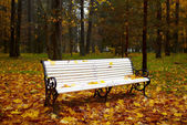 Bench in the autumn park. — Stock fotografie
