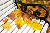 Yellow maple leaf on the bench. — Stock Photo