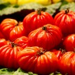 Red tomatoes at the market. — Stock Photo