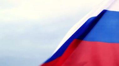 Russian flag waving — Stock Video