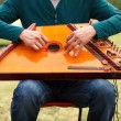 Folk musician playing gusli — Stock Photo
