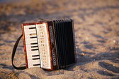 Accordian on a sandy beach — Stock Photo