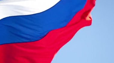 Flag of Russian Federation — Stock Video