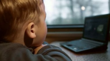 Little boy watching video on laptop — Stock Video