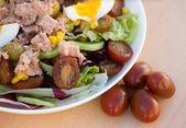 Ensalada de verduras fresca — Foto de Stock
