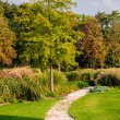 Pathway in the park — Stock Photo