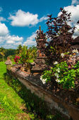 Small temple at rice terrace, Bali, Indonesia — Stock Photo